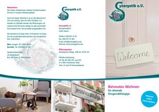 Layout: Gestaltung Flyer Synergetik e. V.